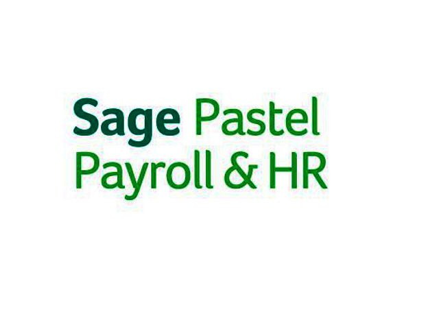 pastel payroll support